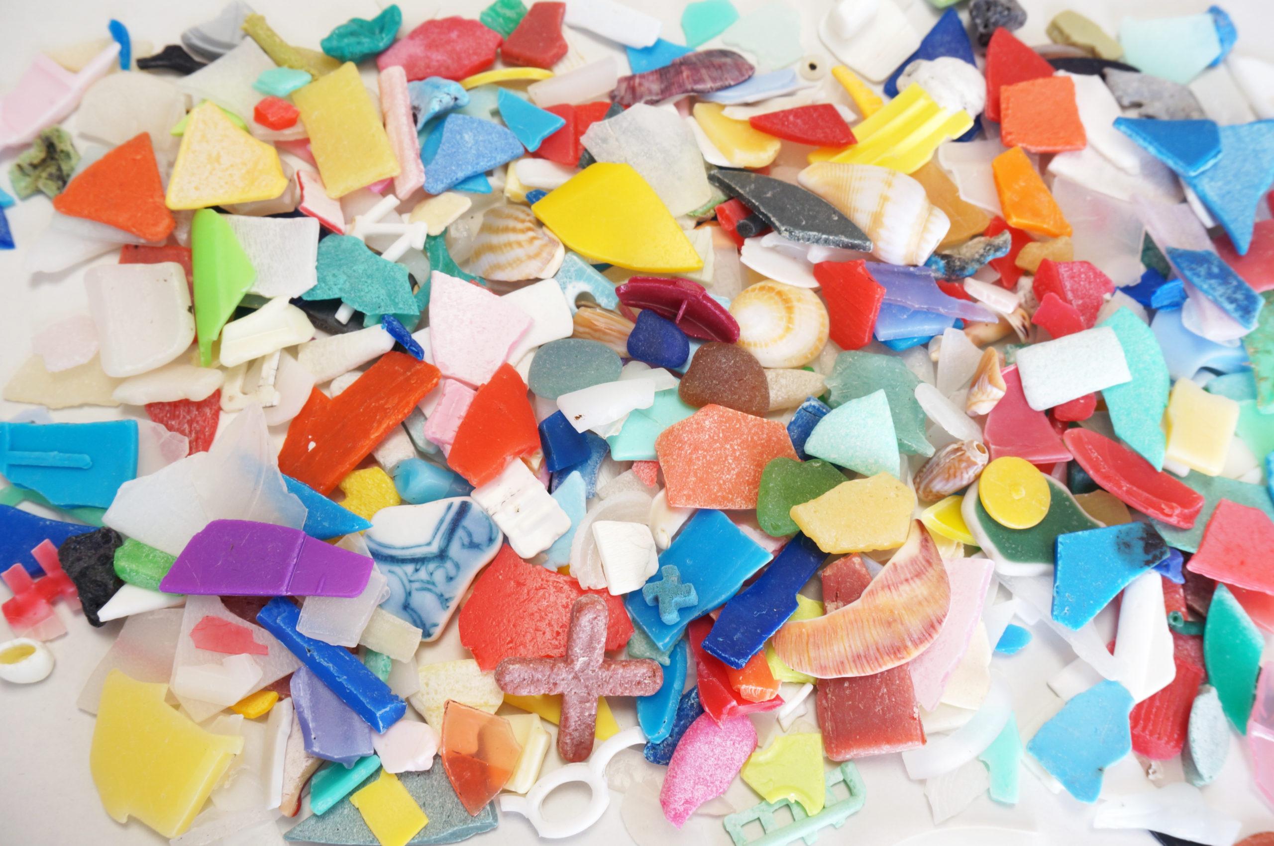 【講座】里地里山学講座 第4講 「海ごみから見えてくる環境問題 ~2つのスコープでのぞくマイクロプラスチックの世界~」